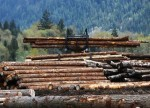 With no U.S.-Canada deal, lumber talks to run parallel to NAFTA